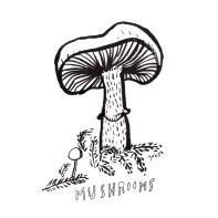 mushrooms_lores